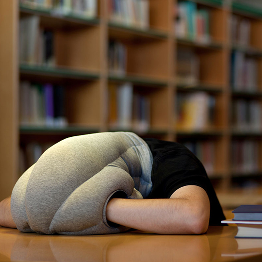 昼寝に最適!柔らかく心地よさを与えてくれる枕 オーストリッチピロー